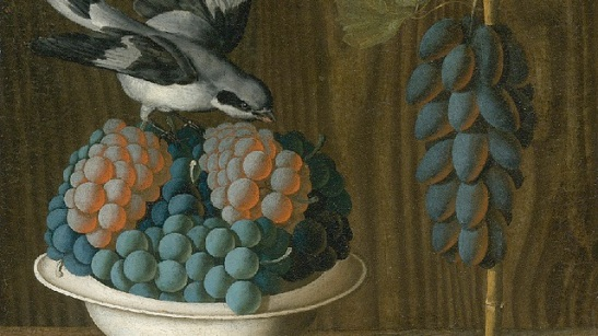 Still Life of Grapes with a Gray Shrike.jpg
