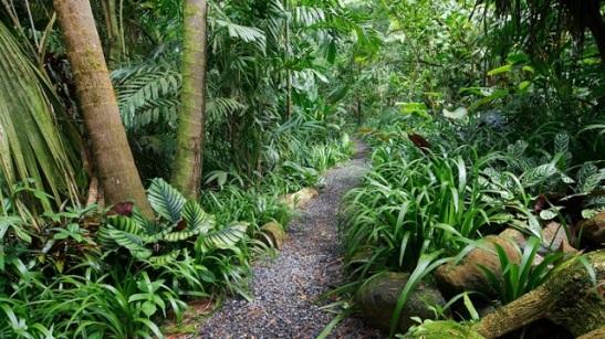 merwin garden.jpg