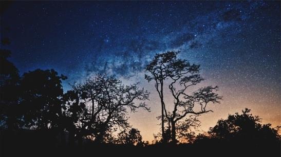 night landscape.jpg