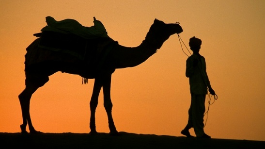man and camel.jpg