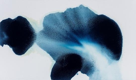 ambiguous flower.jpg