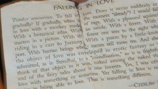 falling in love.jpg