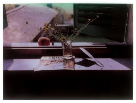 Andrei Tarkovsky polaroid.jpg